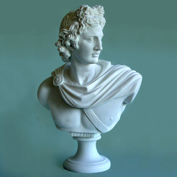 The bust statue of Apollo in White color