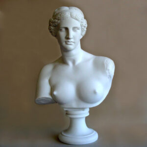Bust statue of Aphrodite in White color